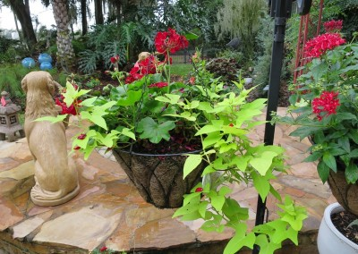 hanging baskets-made to order or available as is